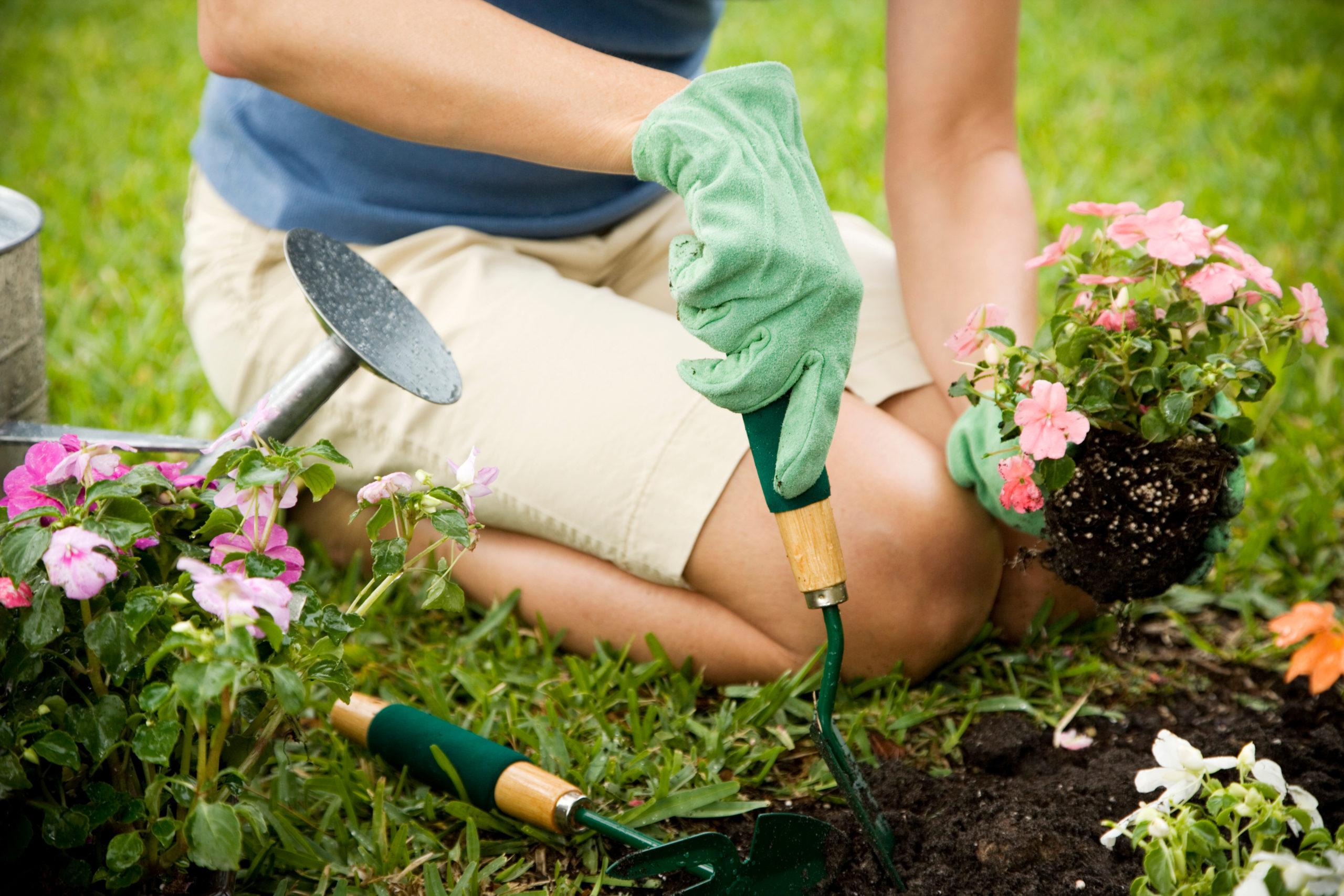 Woman works on her garden