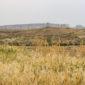 Photo of Wyoming plains